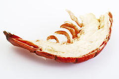 Lobster cut in half close up Royalty Free Stock Images