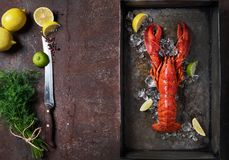 Lobster, dark grey rusty tray served on ice with lemon and live, top view, vintage style stock image