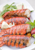 Lobster dinner Royalty Free Stock Photo