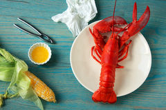 Lobster dinner green close Royalty Free Stock Photos