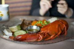Lobster dinner. At Nova Scotia Canada Stock Photo
