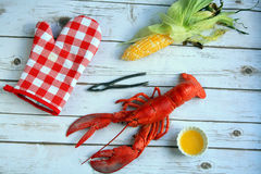 Lobster dinner white background Royalty Free Stock Images