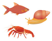 Lobster  fish smail Royalty Free Stock Images