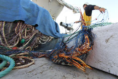Lobster Fisherman at work Royalty Free Stock Photos