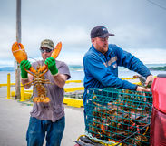 Lobster Fishermen, Newfoundland Stock Photo