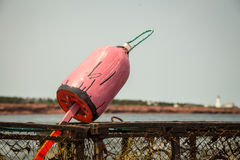 Lobster fishing buoy Royalty Free Stock Images