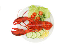 Lobster and garnish. Lobster and salad garnish on a plate viewed from above royalty free stock photography