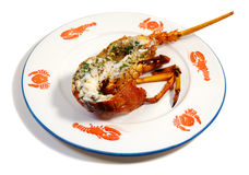 Lobster on the half shell. Baked lobster on a plate with shellfish patterns royalty free stock photos