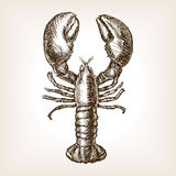 Lobster hand drawn sketch style vector Royalty Free Stock Image