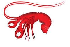Lobster illustration Royalty Free Stock Photo