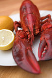 Lobster & lemon Stock Image