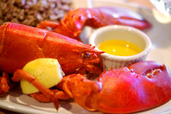 Lobster with lemon and brown rice Stock Photography