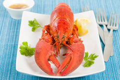 Lobster with Lemon Wedges and Browned Butter Stock Photography