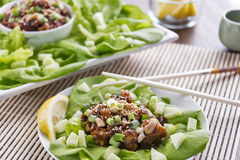 Lobster lettuce wraps with cashews Stock Photo