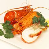 Lobster lunch Stock Images
