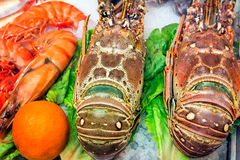 Lobster: marine crustaceans of the Mediterranean sea. Stock Photo