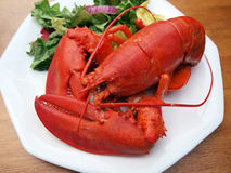 Lobster meal 4 Stock Photo