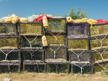 Lobster nets Stock Image