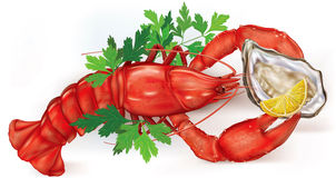 Lobster and Oyster Royalty Free Stock Photos