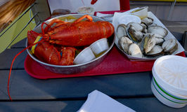 Lobster and oyster seafood fest Stock Images