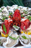Lobster and oysters, fresh seafood. Close-up Stock Photos