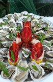 Lobster and oysters, fresh seafood. Close-up Stock Photo