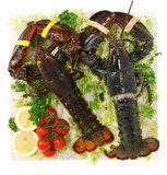 Lobster on plan marble Stock Photography