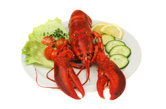 Lobster on plate Stock Photo