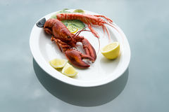 Lobster on Plate Royalty Free Stock Images