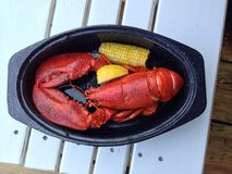 Lobster plate royalty free stock photos