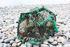 Lobster Pot Stock Image