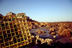 Lobster pot on the beach Royalty Free Stock Image