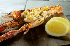 Lobster Prawn food Royalty Free Stock Images