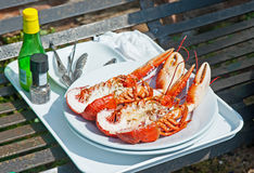 Lobster prepared outside in Crail Harbor,. Lobster and condiments prepared by fisherman in Crail harbor, Fife, Scotland Royalty Free Stock Photos