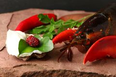 Lobster put on the stone plate. Lobster put on the stone plate represent seafood menu Stock Images