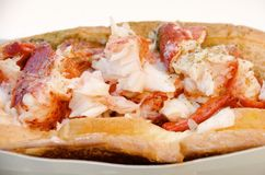 Lobster Roll. A lobster roll with chunks of seasoned boiled lobster on a buttered bun stock photos