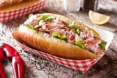 Lobster Roll. A delicious lobster roll on a rustic wood table top stock photos