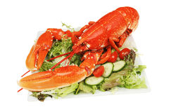 Lobster and salad Royalty Free Stock Photo