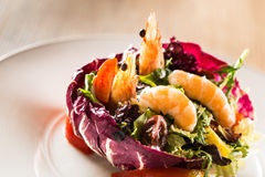 Lobster salad Royalty Free Stock Images
