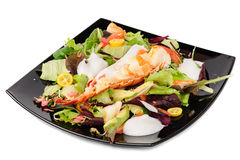 Lobster salad in japanese style Stock Images