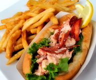 Lobster salad sandwhich. A close up of laboster salad sandwhich and french fries on a plate Stock Photos