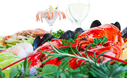 Lobster and seafood royalty free stock image