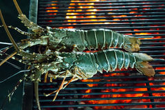 Lobster seafood in BBQ Flames Stock Image