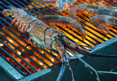 Lobster seafood in BBQ Flames Stock Images