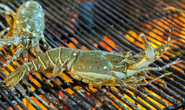 Lobster seafood in BBQ Flames Stock Photography