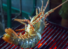 Lobster seafood in BBQ Flames Royalty Free Stock Images