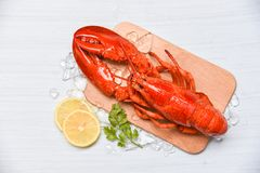 Lobster seafood with ice on wooden cutting board and lemon coriander - Close up of steamed lobster food royalty free stock photos