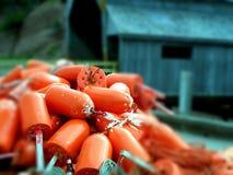 Lobster Season Stock Photos