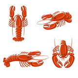 Lobster set. Vector. Lobster set. This is file of EPS8 format Royalty Free Stock Photos