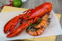 Lobster and shrimps. Big cooked lobster and tiger shrimps ready for eating Stock Images